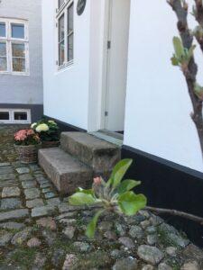 smykkeshowroom i Ebeltoft: Æbletræ